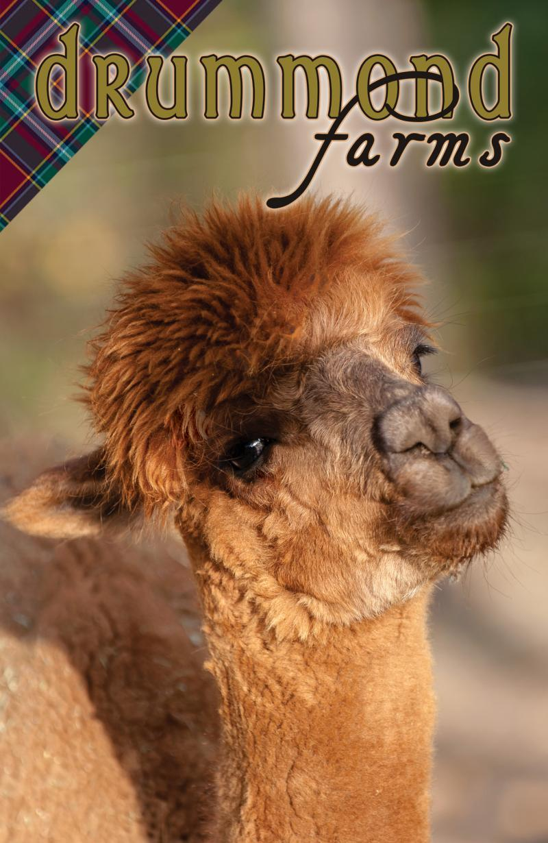 Drummond Farms Alpacas and Woolens LLC